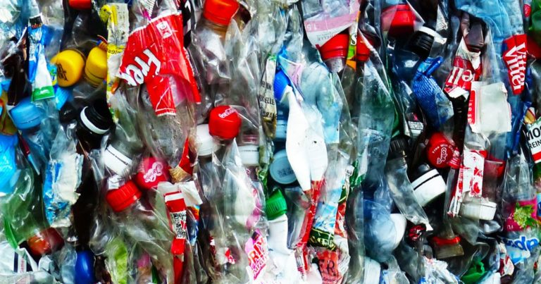 Microplastics Are Already in Our Bodies, According to a New Study