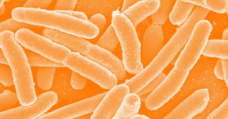 A New Test Can Screen for Every Bacteria That Causes Disease In Humans