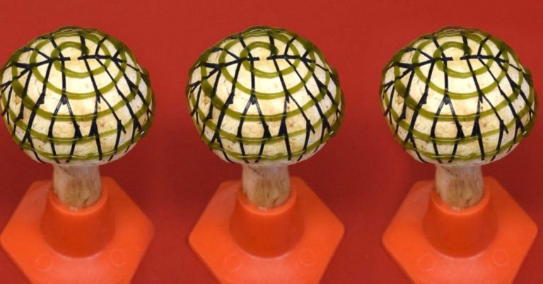 """We Can Now Generate Electricity From """"Bionic Mushrooms"""""""