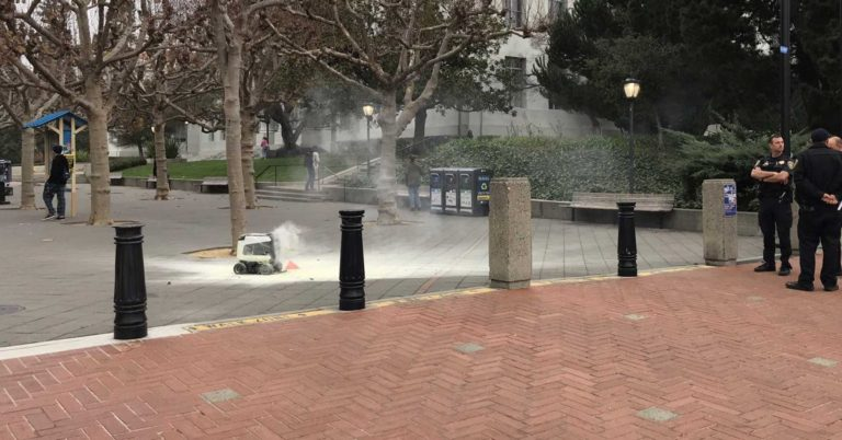 A Delivery Robot Burst Into Flames in California