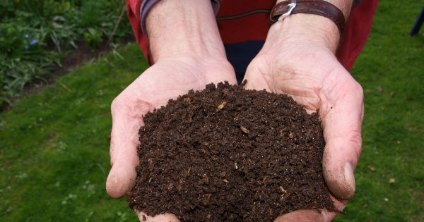 Washington May Become the First State to Legalize Human Composting