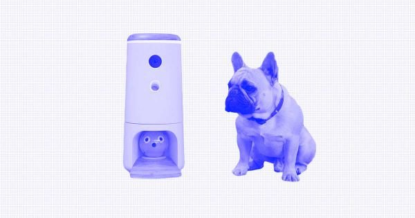 The High Tech Pet Gifts Are Perfect For Dogs and Cats.