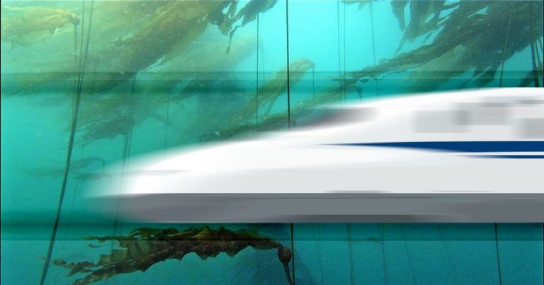 The UAE Wants an Underwater Bullet Train to India