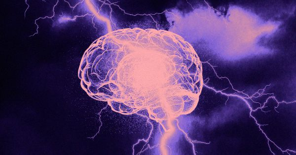 """Scientists Claim to Find """"Neurological Signature"""" of Consciousness"""