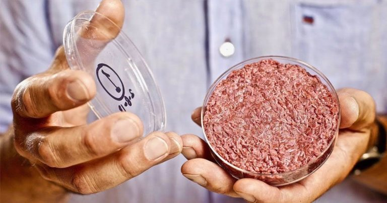 Lab-Grown Meat Could Be Worse for the Environment
