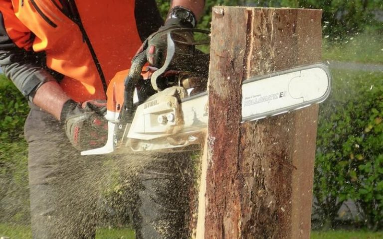 Chainsaw Buying Guide 2021