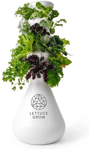 Lettuce Grow 24-Plant Hydroponic System